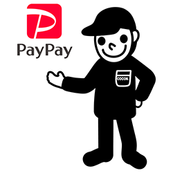 pay_icatch